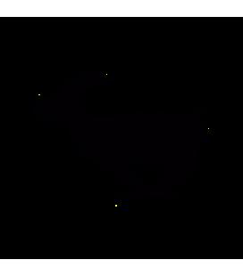Lièvre 01