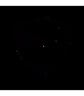 Fina 02