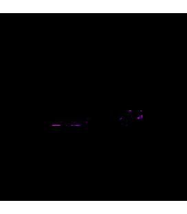Nissan 350 Z Droite