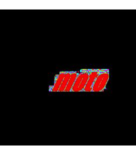 Moto GP 01