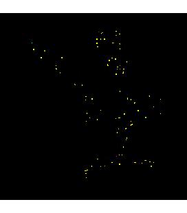 Bipbip01