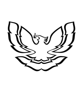 Aigle 501
