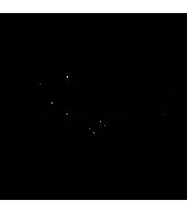 Exon 01