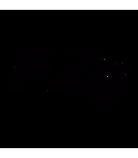 FZ6 01
